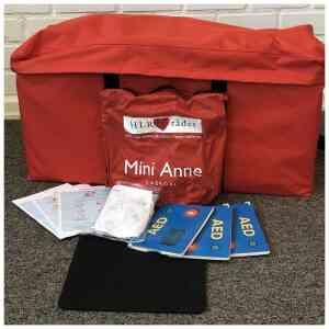 Mini-Anne plus, 10-pack